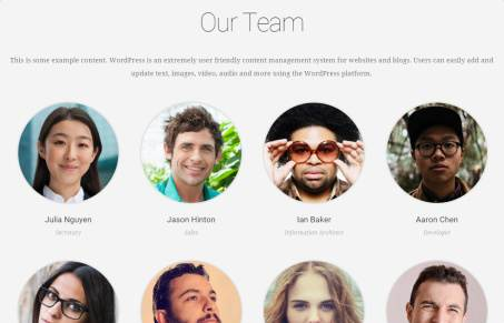 Team Page – Business Theme