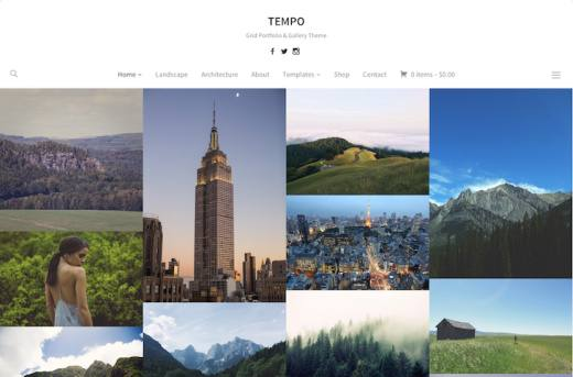 Tempo Review WPZOOM – Grid Portfolio and Gallery WordPress Theme