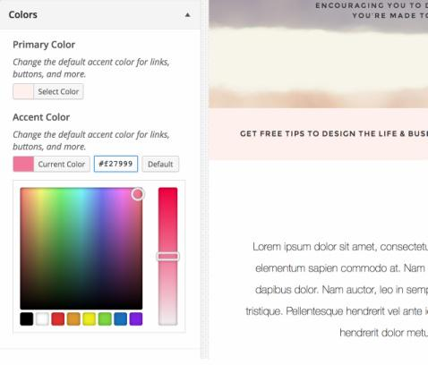 Color Scheme options - Customizer Style theme