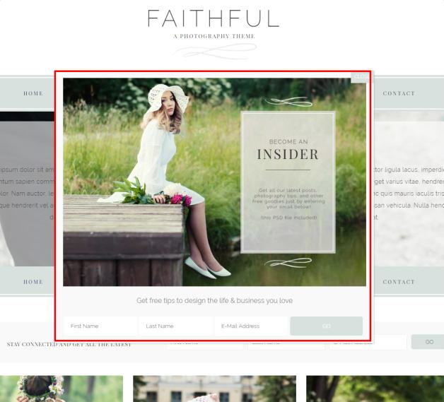 Popup Maker plugin - Faithful