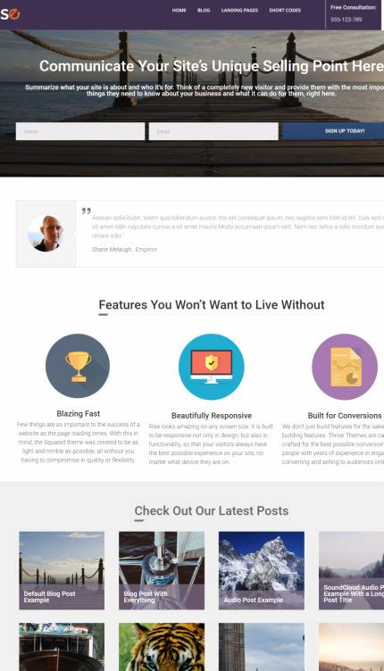 WordPress Themes Thrive Themes Buyback