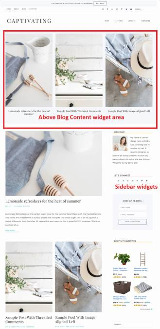 Custom Blog Page Template - Captivating
