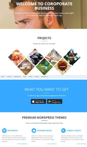 Homepage Sections - Starbiz Business Theme