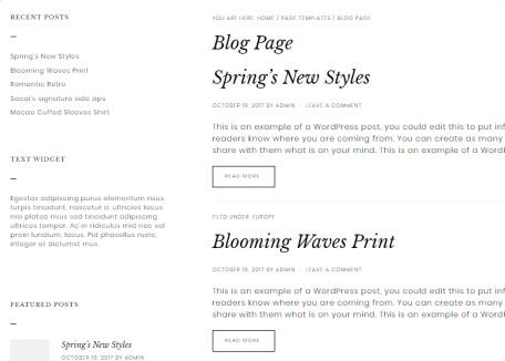 Boutik Blog Page with Sidebar